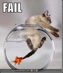 cat-fail